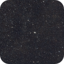 Bodes Galaxy @85mm,                                FionaMorris6