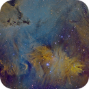 NGC2264  - The Cone and Christmas Tree Nebula Mosaic in SHO,                                Cfosterstars