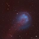 HFG1 (Heckathorn-Fesen-Gull 1) in HOO,                                Douglas J Struble