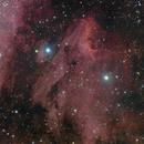 IC5070 Pelican nebula,                                Ivan Bosnar