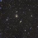 Pavo Galaxy Cluster,                                Geoff