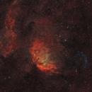 SH2-101 - The Tulip Nebula and Cygnus X-1 Bow Shockwave (Bicolor),                                Frank Breslawski