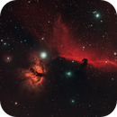 Horsehead and Flame Nebulae,                                Shane Jones