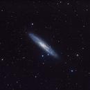 Sculptor Galaxy,                                ECNeilson