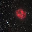 Cocoon Nebula,                                Hermann Schieder