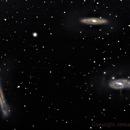 Leo Triplet M65, M66 & NGC 3628 and asteroid (381) Myrrha (center trail),                                Jesús Piñeiro V.