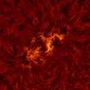 2020.10.27 Sun AR12778 H-Alpha Solar flare animation,                                Vladimir