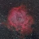 NGC2239 - C49 Rosette Nebula,                                Giulio