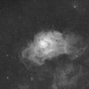 Lagoon Nebula HA: First attempt,                                AcmeAstro
