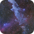 IC2118 Witch Head nebula,                                Masahiro Takahashi