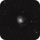 M101 Pinwheel Galaxy,                                Stan Smith