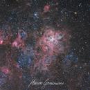 NGC 2070 Tarantulas Nebula 30 Doradus,                                Maicon Germiniani