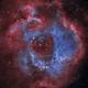 Rosette Nebula HOO,                                Robert Habolin
