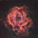 Rosette Nebula  NGC 2237,                                Antonio Bonanno