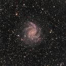 NGC-6946 (Fireworks Galaxy),                                Joel Shepherd