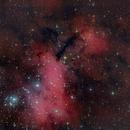 Gamba Nebula,                                Sebastian Colombo
