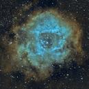 Rosette Nebula (Narrowband),                                pcyvr