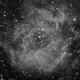 Rosette Nebula - 20200226 - Kelda 135mm F2.8 - Ha,                                altazastro