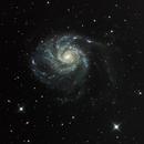 Pinwheel Galaxy - M101,                                Johnnyboy1104