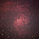 Flaming Star Nebula,                                Alan Hobbs