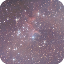 The Heart of the Heart Nebula: desperate attempt with DSLR,                                Michele Vonci