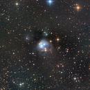 NGC 7129,                                Kathy Walker