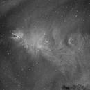 NGC2264 - Cone Nebula,                                Fabio Crudele Photography
