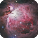 Orion Nebula,                                Peter