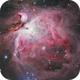 Orion Nebula,                                Peter