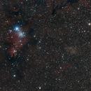 NGC2264 Christmas Tree cluster wide field,                                Riedl Rudolf