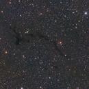 Barnard 150  AKA The Seahorse Nebula,                                Ray Heinle