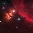 The Horsehead and Flame nebulae,                                Andy Elliott