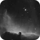 Horsehead Nebula,                                Michael Gruenwald