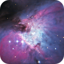 M42 close up,                                Kevin Parker