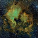 North America Nebula Region, SHO, 1-3 Aug 2017,                                David Dearden