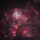 NGC 2070 Tarantula Nebula,                                Don Pearce