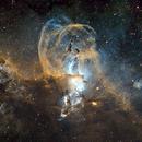 The Statue of Liberty Nebula,                                Kabir Jami