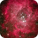 Rosette Nebula,                                David Holko
