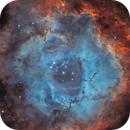 The Rosette Nebula SHO,                                Daniel Pázmán