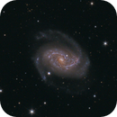 NGC5248 a rarely photographed Galaxy in Bootes,                                Stephan Linhart