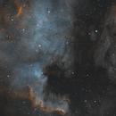 North America & Pelican Nebulae,                                404timc