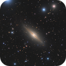 Little Sombrero - NGC7814,                                xordi