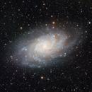 M33 Triangulum Galaxy,                                Brett Creider