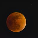 Lunar Eclipse,                                Norman Revere