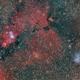 NGC 2264 and IC 2169,                                GALASSIA 60
