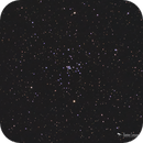 NGC 2281 - Open Cluster in Auriga,                                Damien Cannane