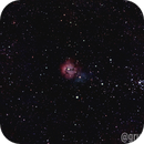 Deep Space Imaging from Bortle 11,                                Amanda McAlpin