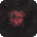 Elephant's Trunk Nebula Region,                                Landon Boehm