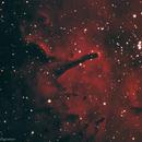 NGC 6820 and NGC 6823,                                Kyle Butler