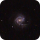 SN 2020jfo in M61,                                Paolo Demaria